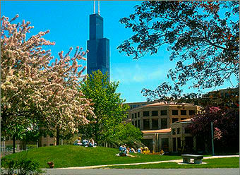 The University of Illinois - Chicago